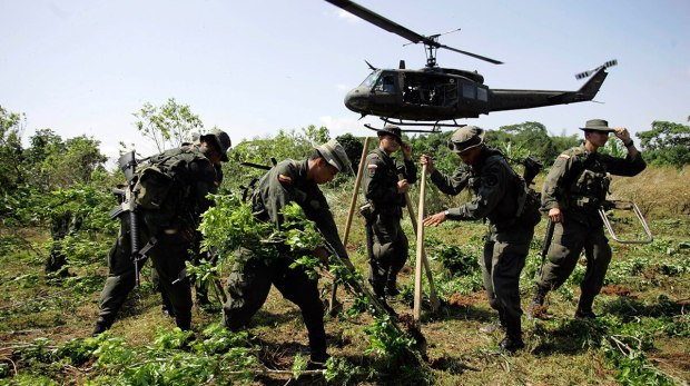 Narcotics-police-officers-cocaine-eradication_Colombia_Fernando-Vergara_Gamechangers_InSight-Crime_20-12-17 (1).jpg